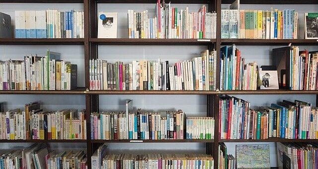 Bücher-Bücherschrank